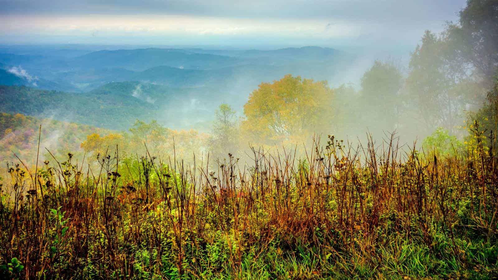Blue Ridge Mountains Fog